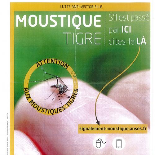 Lutte contre le moustique tigre